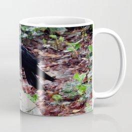 Ahh...St. Francis Coffee Mug