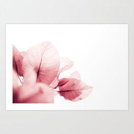 Flowers flash Art Print