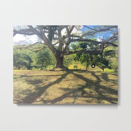Tire Swing in a Tropical Place Metal Print