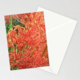 Secret Garden   Red Spider Lily Stationery Cards