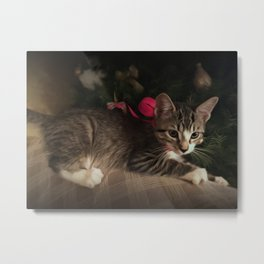 Molly in oils Metal Print