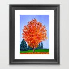 Fall tree in ND Framed Art Print