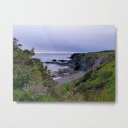 Trout River, Newfoundland  Metal Print