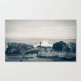Waves of Kaikoura Canvas Print