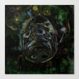 Tripfish Two Canvas Print