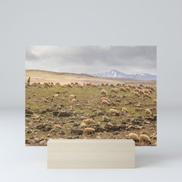 Sheppard in the Atlas mountains, Morocco. Mini Art Print