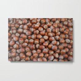 Hazelnuts Illustration Metal Print