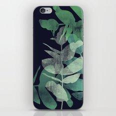 Eucalyptus iPhone & iPod Skin