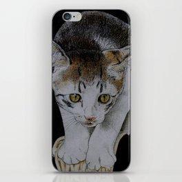 Focused cat iPhone Skin