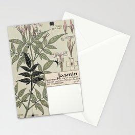 Maurice Pillard Verneuil - Étude de la plante (1903): Jasmine Stationery Cards