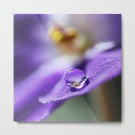 Violet Macro Droplet Metal Print