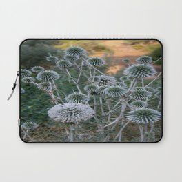 Seed Head Of Leek Flower Allium Sphaerocephalon  Laptop Sleeve