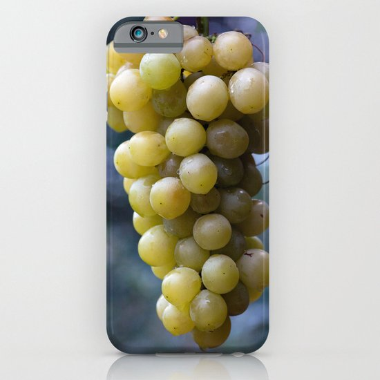 Harvest time ... 8508 iPhone & iPod Case
