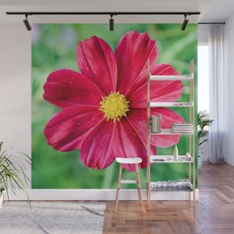 Cosmos Flower in the Garden Wall Mural