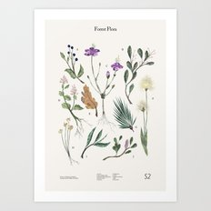 Shelter 2 - Forest Flora Art Print