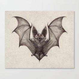 Batty  Canvas Print