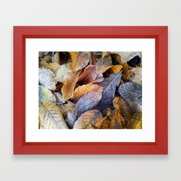 Frozen leaves Framed Art Print