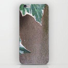 008 iPhone Skin