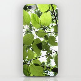 Where The Light Is iPhone Skin