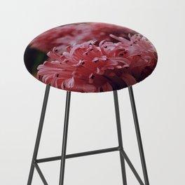 Pink Bellingrath Floral Bar Stool