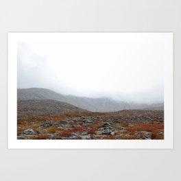 Sub-polar ural mountais. Tundra landscape. Art Print