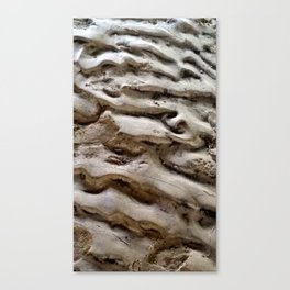SDRV   Sand Bar Canvas Print