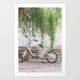 Bike Under the Willows - Suzhou China Art Print