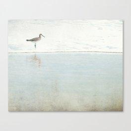 Reflecting Sandpiper Canvas Print