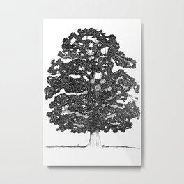 Chestnut Tree Metal Print