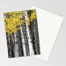 Yellow, Black, and White // Aspen Trees in Crested Butte Stationery Cards