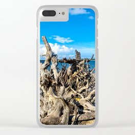 Big Talbot Island State Park Florida Clear iPhone Case