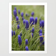 On the Hillside Art Print