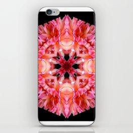 Pink Dahlias iPhone Skin