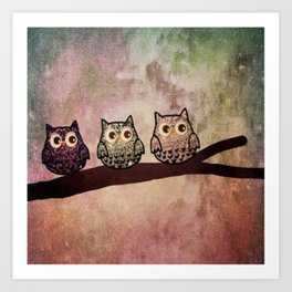 owl 35 Art Print