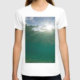 Sardine School T-shirt