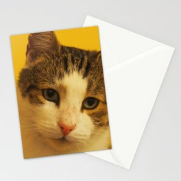 noodlehead Stationery Cards