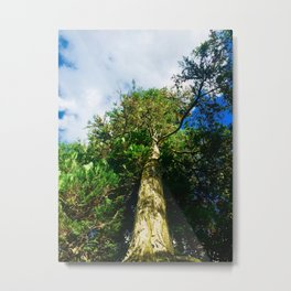 Blessed and Strong Photography Metal Print