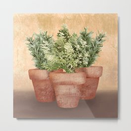 Rosemary and Thyme Metal Print