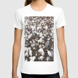 Cotton field in rural Tunica County Mississippi T-shirt