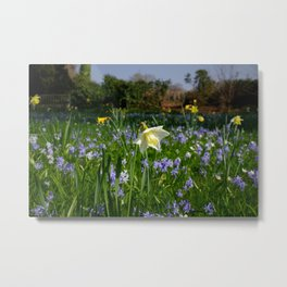 Sring Flower Meadow Metal Print