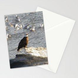 Eagle on Ice Stationery Cards