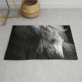 Pregnant Dartmoor Pony Mare Rug