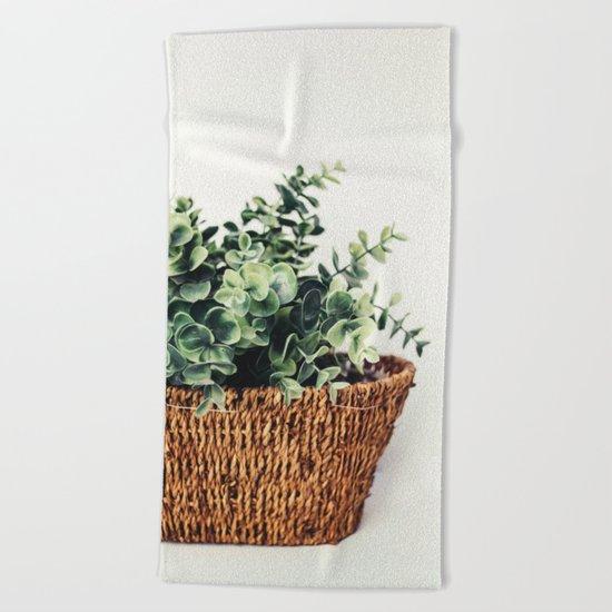 Plant On White Beach Towel