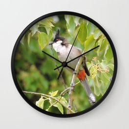 Red-Whiskered Bulbul -- 2 Wall Clock