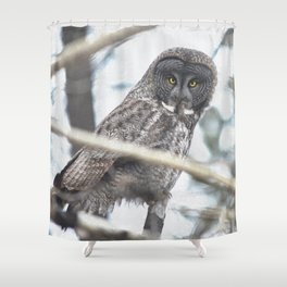 Let Us Prey - Great Grey Owl & Mouse Shower Curtain