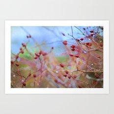 autumn fruits Art Print