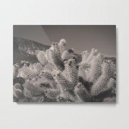 Jumping Cholla Cactus Metal Print