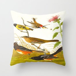 Chestnut-coloured Finch, Black-headed Siskin, Black crown Bunting, Arctic Ground Finch Throw Pillow