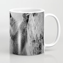 Staring Squirrel in Black and White Coffee Mug