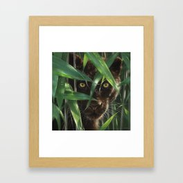 Black Panther - Wild Eyes Framed Art Print
